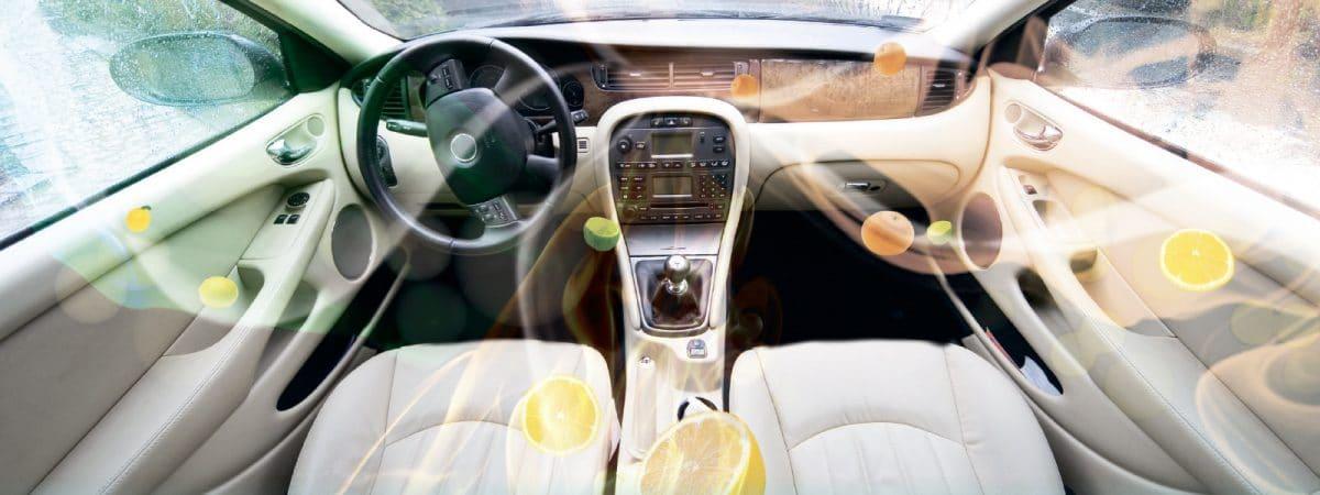 Чем пахнет?! Как легко устранить неприятный запах в салоне автомобиля